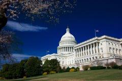 U.S. Capitolio en un resorte asoleado Imagen de archivo libre de regalías