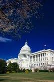 U.S. Capitool op de zonnige lente Royalty-vrije Stock Foto's