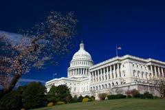 U.S. Capitool op de zonnige lente Stock Afbeelding