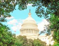 U S Capitool Washington D C Ontworpen door bomen stock foto