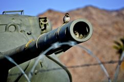 U S Carri armati di esercito immagine stock