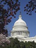 U.S. Cupola di Campidoglio Immagine Stock Libera da Diritti