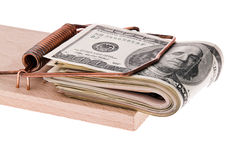 U.S. dollars bills in a mousetrap Royalty Free Stock Images