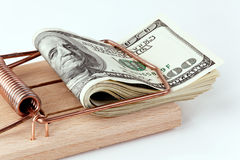 U.S. dollars in bills mousetrap Stock Images