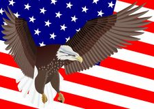 U.S. Flag and Eagle Stock Photo