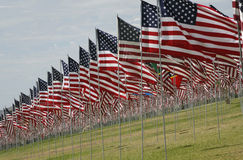 U.S. Flags - Memorial Display. US and other flags on display honoring 9/11 victims Royalty Free Stock Photos