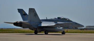 U S Hornissen-Kampfflugzeug der Marine-F-18 Stockbilder
