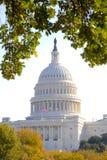 U.S. Kapitol im Herbst Stockfoto
