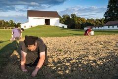 U.S.A. - L'Ohio - Amish fotografie stock