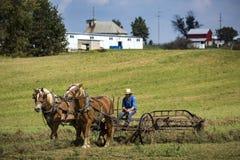 U.S.A. - L'Ohio - Amish immagini stock