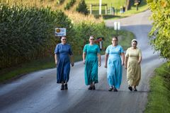 U.S.A. - L'Ohio - Amish immagine stock