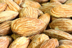 U.S. large almond Stock Image