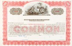 U.S. Lion 1916 étendu de femme de certificat d'actions Image libre de droits