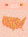 U.S.A map poster or card. Healthy food postcard. U.S.A map poster or card. Veggie postcard. Map of America made out of pink peaches. Fruitarian illustration Stock Photography