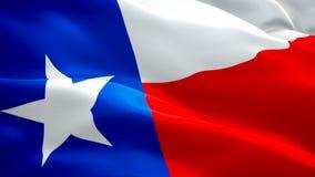 U S Texas State-vlag die in wind videolengte golven Volledige HD Realistische de Vlagachtergrond van de Staat Texas Flag Looping- stock video