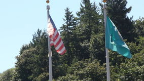 U.S.A and Washington states flags. Two flags one from Washington state one from the USA wave against a forested background stock footage