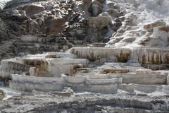 U van het Yellowstone Nationaal Park S National Park Service stock fotografie