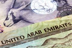 UAE Currency Closeup Stock Image