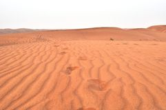 UAE Deserts Royalty Free Stock Photos