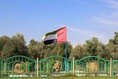 UAE flaga w Liwa oazie Fotografia Stock