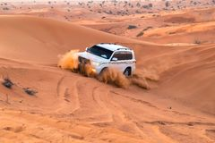 UAE, Fujairah 2017.19.11 Off-road safari on jeeps SUVs in the Arab orange-red sands desert in the sunset sun royalty free stock images