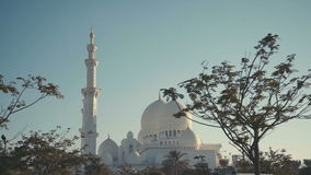 UAE, 2017: Sheikh zayed grand mosque. famous landmark of Abu Dhabi stock video footage