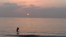 UAE sol, strand, hav, vatten, sand, morgon, afton, Arkivfoton