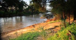 Uaso Nyiro River Royalty Free Stock Photo