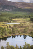 Uath Lochans en Glen Feshie en las montañas de Escocia Fotografía de archivo libre de regalías