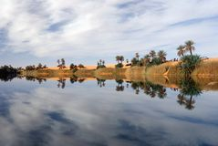 Ubari Oasi, Fezzan, Libië Royalty-vrije Stock Foto