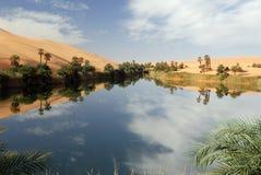 Ubari Oasi, Fezzan, Libyen Lizenzfreies Stockbild