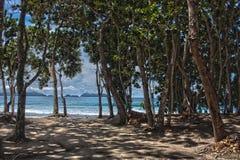 Ubatuba beach Stock Photos