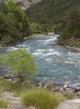 Ubaye river, French Alps Stock Images