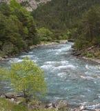 Ubaye river, French Alps Stock Image