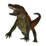 Uberabasuchus on White Stock Photo