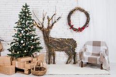 Ubicación del ` s del Año Nuevo en el estudio con un ciervo, adornado con un árbol de navidad, regalos, una cesta de conos Fotos de archivo libres de regalías