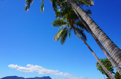 Ubicación tropical de la playa fotografía de archivo