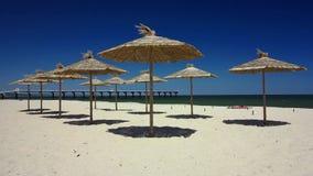 Ubmrellas соломы, пляж в Shkorpilovtsi, Болгарии акции видеоматериалы