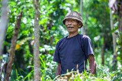 Ubud, Μπαλί, Ινδονησία - το Μάρτιο του 2015 στοκ φωτογραφία με δικαίωμα ελεύθερης χρήσης