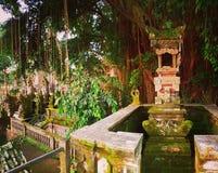 Архитектура в джунглях, Ubud, Бали стоковые изображения rf
