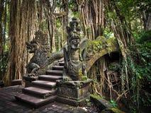 在猴子森林圣所的龙桥梁在Ubud,巴厘岛 免版税库存图片