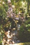 Ubud-Affe-Waldflusspanorama Lizenzfreies Stockbild
