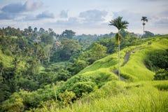 Ubud Bali Royalty Free Stock Images