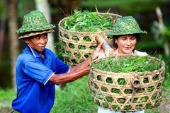 2009 10 07, Ubud, Bali Trabalhadores em Ubud Curso em torno de Bali fotos de stock