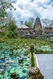 UBUD, INDONÉSIA - 29 DE AGOSTO DE 2008: Wi hindu antigos do templo dos lótus Foto de Stock