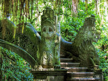 Ubud Monkey Forest Royalty Free Stock Image