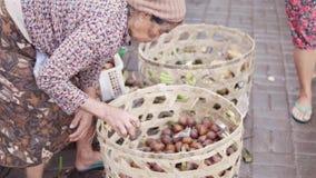 UBUD-STAD, BALI, INDONESIEN - FEBRUARI 2, 2017: Ormfruktsalak på marknaden Den indonesiska gamla kvinnan sorterar nytt organiskt stock video
