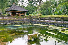 Ubud temple Royalty Free Stock Photography