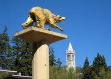 UC Berkeley campus Stock Photography