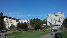 UC Berkeley Stock Photo